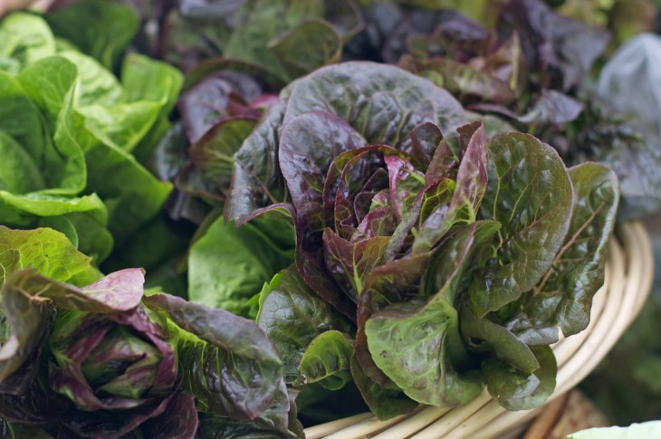 green foods heal