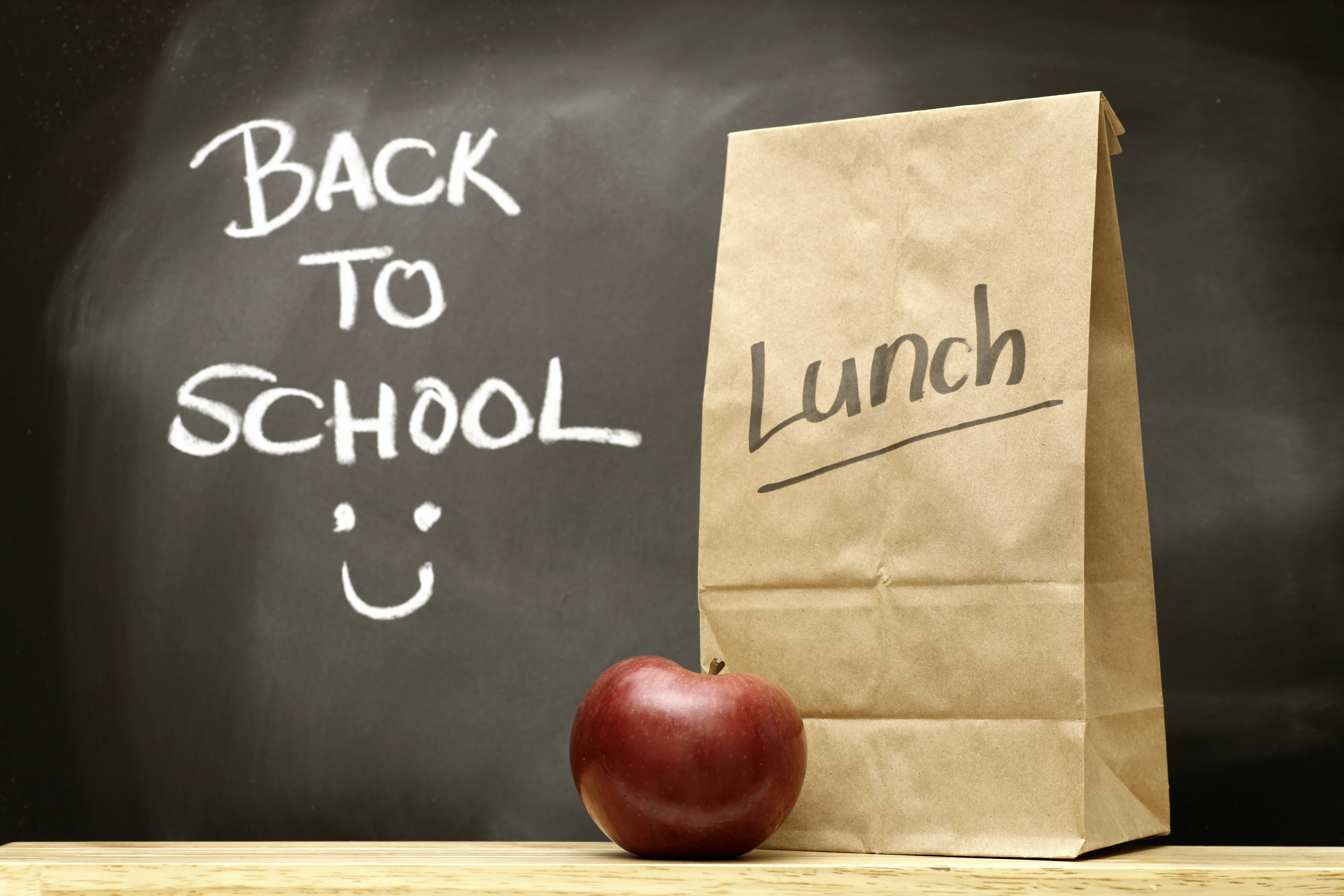 Back to School Lunch Envy