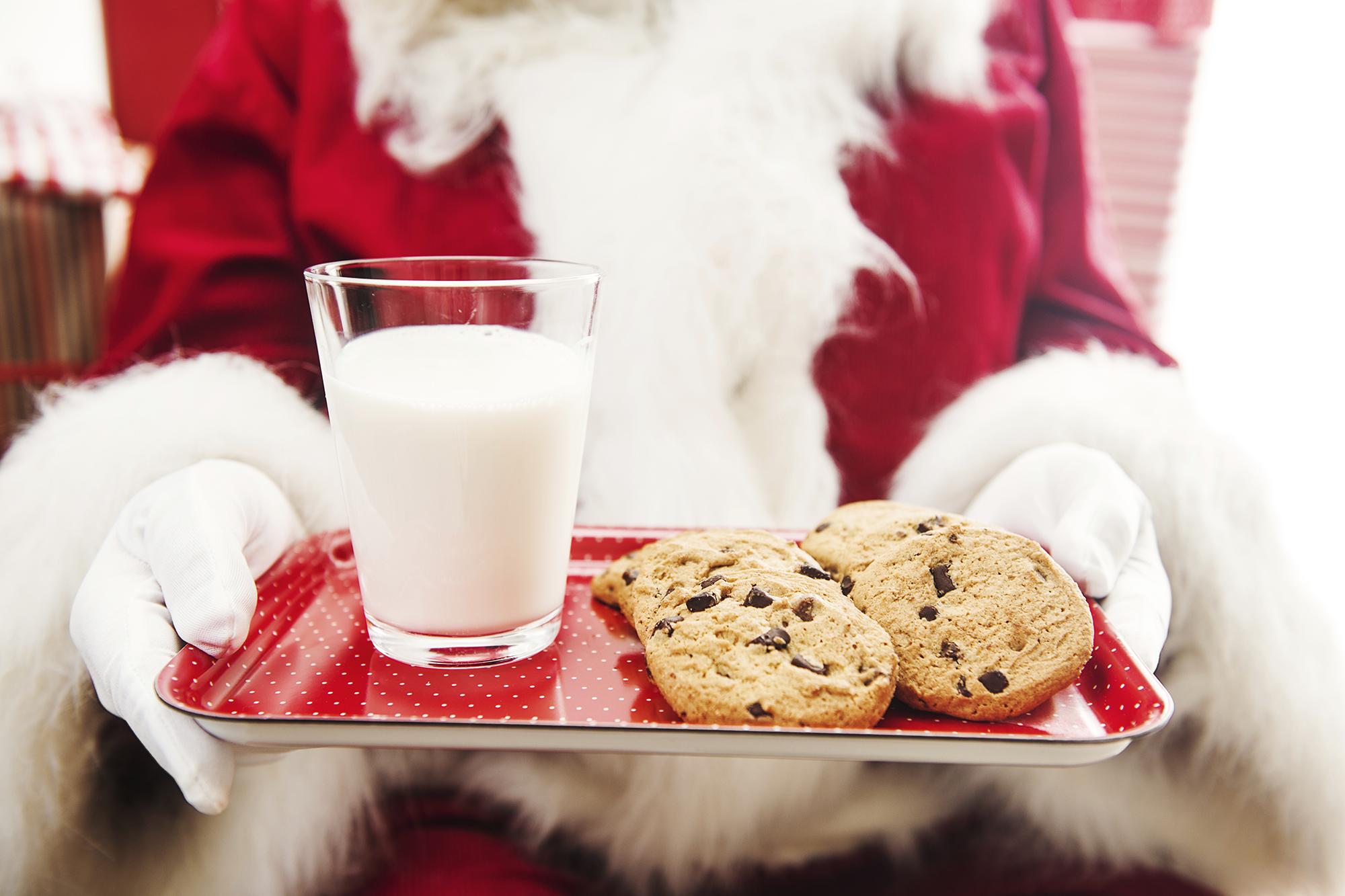 Christmas Purium Cookies That Santa Will L.O.V.