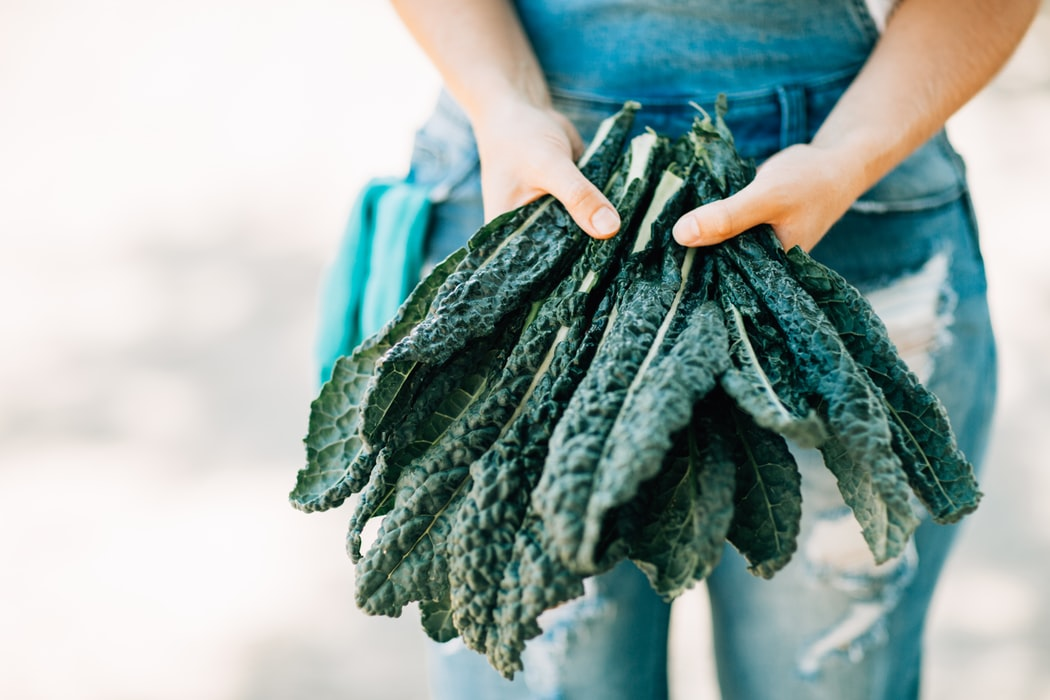 Person holding kale, helps blood glucose levels