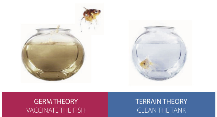 Germ Theory Vs. Terrain Theory